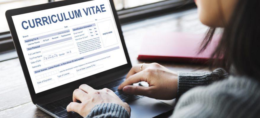 creare un curriculum online